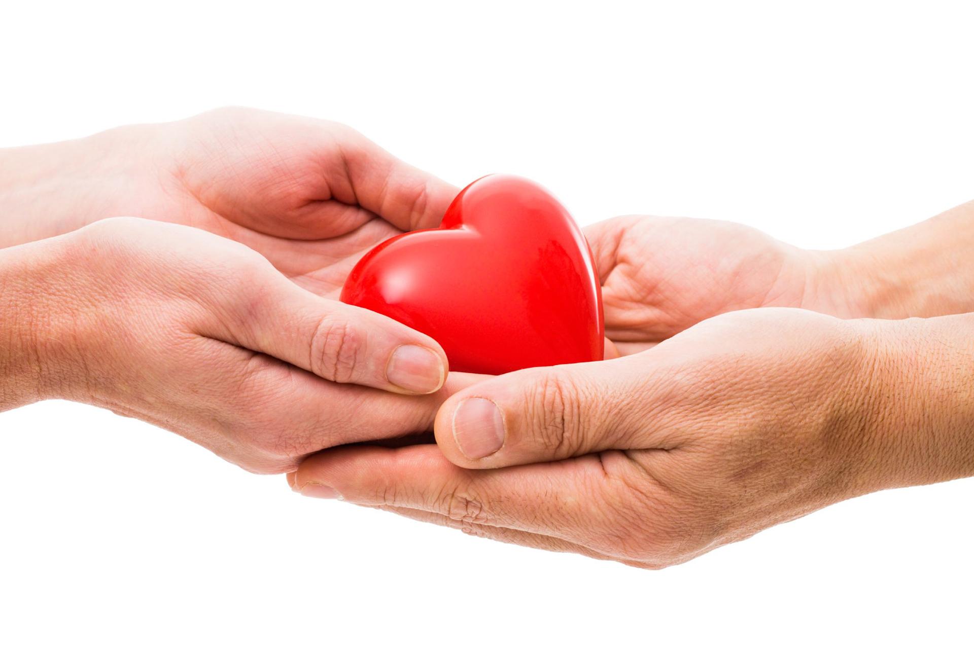 didasclaia donazione